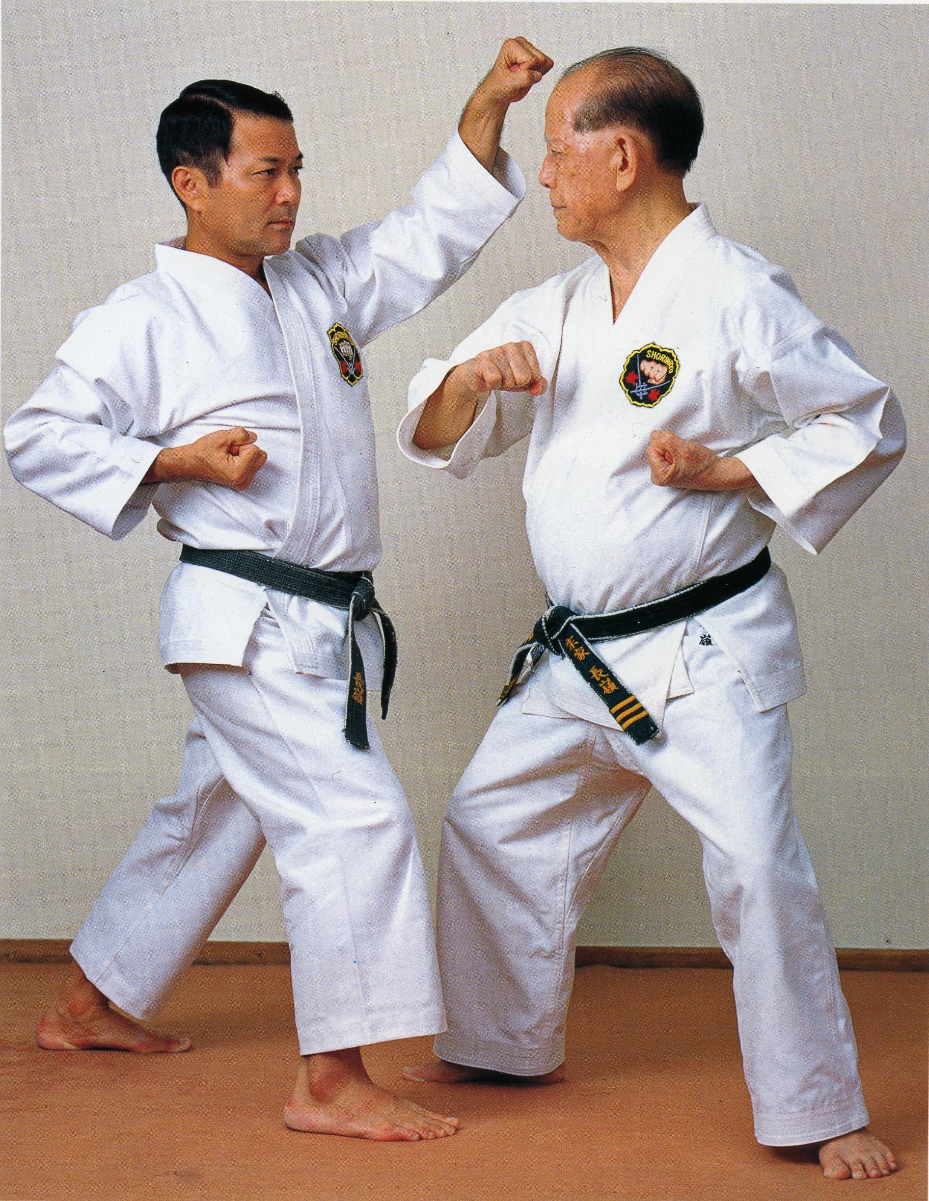 Hanshi and Soke perform yakasoku kumite #3